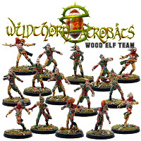 https://sites.google.com/site/irongolemsminiatures/store/wood-elf-team/Elfos%20Silvanos.png?attredirects=0